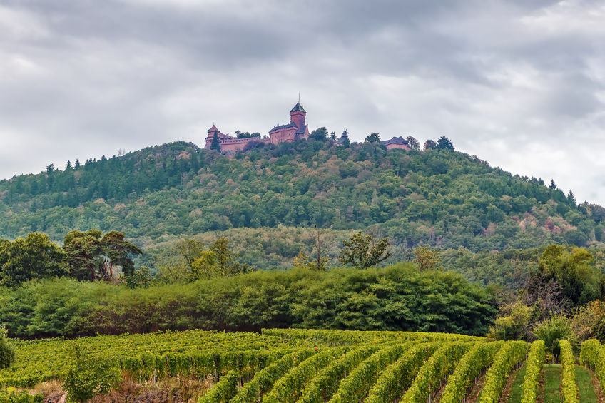 chateau alsace